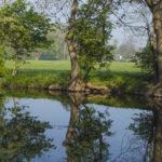 Am Flussrand Groitzsch