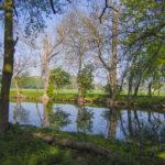 Natur erleben in Groitzsch